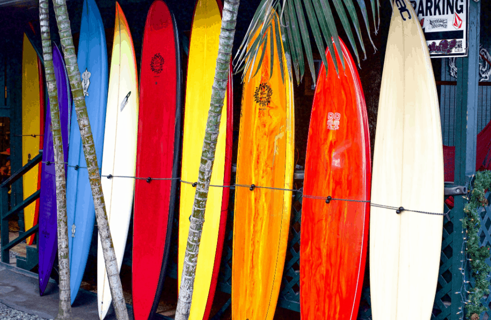 equipment for surfing (2)